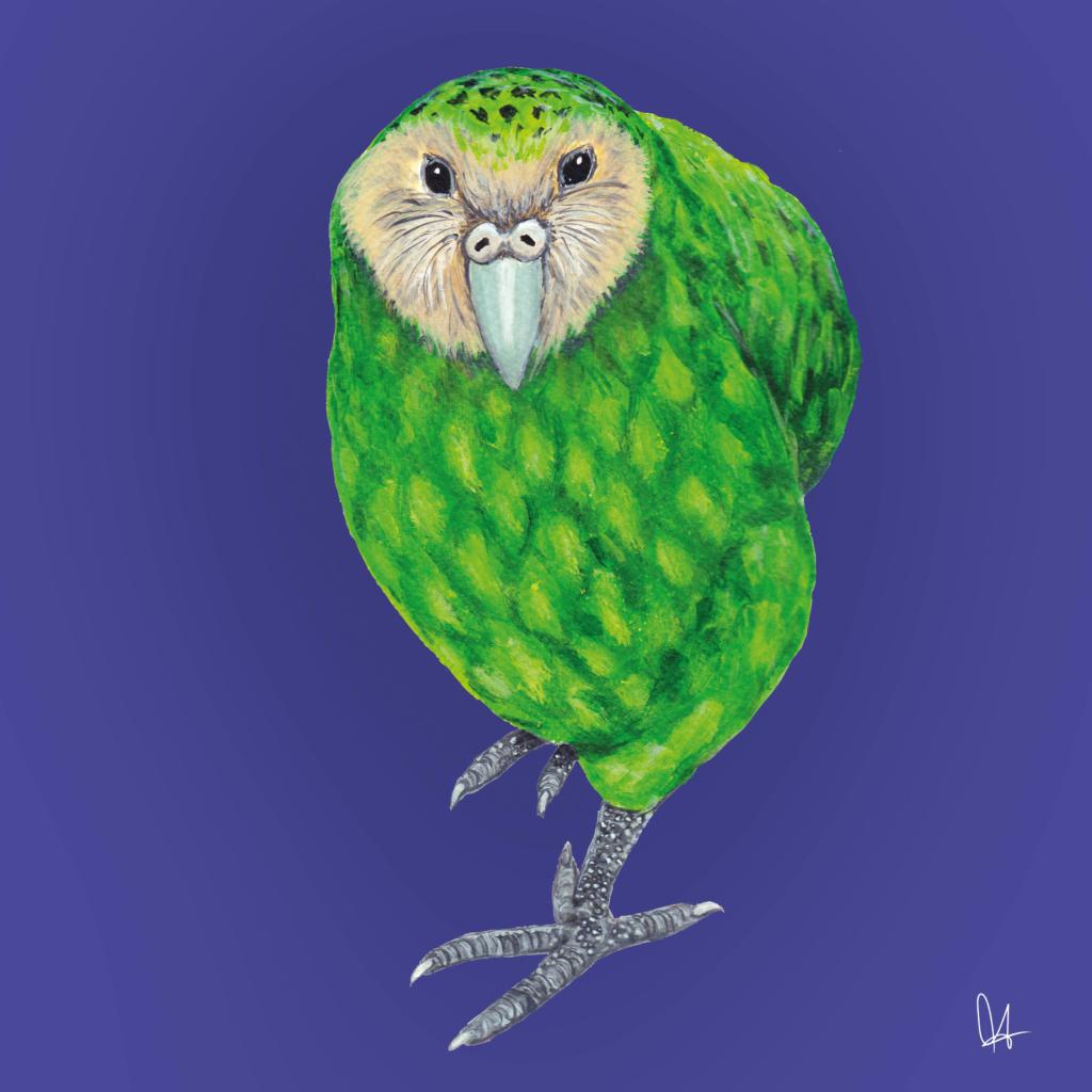 Hagen der Kakapo